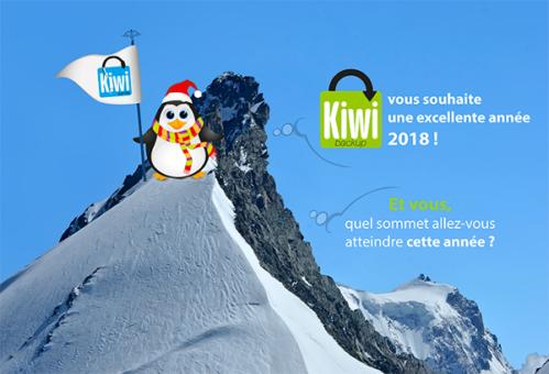 Kiwi Santé vous souhaite une excellente année 2018